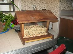 The Kerrie Show: Wood Project: See-Through Birdhouse (Plans to Come!)