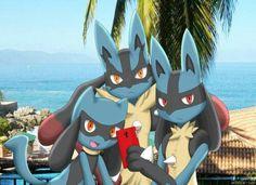 Riolu, Lucario and Mega Lucario Pokemon Comics, All Pokemon, Pokemon Fan Art, Cute Pokemon, Pokemon Stuff, Scary Pokemon, Mega Lucario, Pokemon Eeveelutions, Best Pokemon Ever
