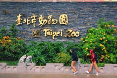 Picture of Taipei Zoo Taiwan Holiday 72 Taipei, Things To Think About, Amber, Vacation, Holiday, Pictures, Photos, Vacations, Vacations