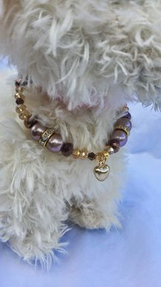 Dog Collar Pet Jewelry Dog Jewelry by FancyPawsDogBoutique on Etsy, $10.00