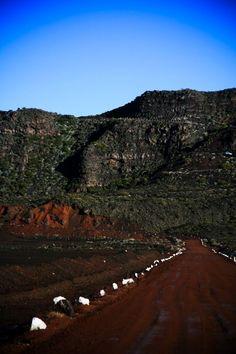 Route du Piton de la Fournaise - Île de la Réunion