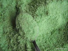Παρασκευή οικολογικών εντομοκτόνων για φυτοπροστασία   Τα σπρέι λαδιού δουλεύουν σαν φυσικά εντομοκτόνα  πνίγοντας τα βλαβερά έντομα  ότα...