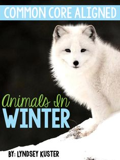 awesome animals in winter articles and activities!!!