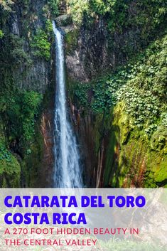 Visit the stunning Catarata del Toro waterfall in the Central Valley of Costa RIca. REad our guide to visiting this waterfall: http://mytanfeet.com/activities/catarata-del-toro/