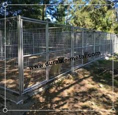 Heavy Duty Mutiple Run Dog Kennels with Fight Guard Divider - Durable Metal Products Co.,Ltd