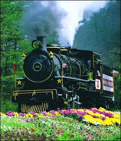Dollywood Steam Engine   Pigeon Forge, Tennessee