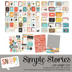 {96} 3x4 cards, {48} 4x6 cards, {44} Fundamentals Pieces, {2} Alphabets and {13} Expressions Pieces. This is a digital kit available for purchase as a digital download, no physical product will be delivered to you. The collection is for personal use only; no commercial use permitted.