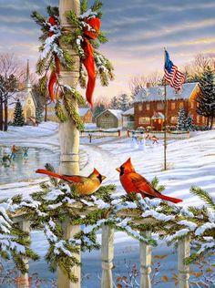 Christmas Cardinals...Sam Timm