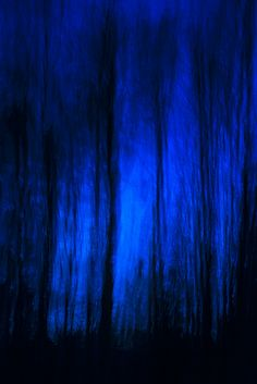 Kind Of Blue, Love Blue, Moonlight Photography, Everything Is Blue, Blue Bayou, Paint Color Palettes, Blue Aesthetic, Color Azul, Pantone Color