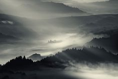 35PHOTO - Boguslaw Strempel - ...