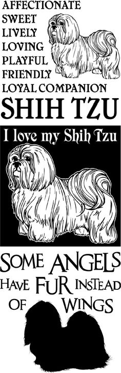 SHIRTS & GIFTS FOR THE DOG LOVER. THESE SHIH TZU DESIGNS ARE AVAILABLE IN 18 DIFFERENT INK COLORS… T-shirts, hoodies, blankets, mugs, magnets, and more.  There are 40 other breeds to choose from. #shihtzu