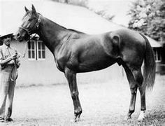Assault (March 26, 1943 – September 2, 1971)[ was an American Hall of Fame Thoroughbred racehorse who won the U.S. Triple Crown in 1946.