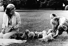 Betty Ford sits on the White House lawns with Liberty and her puppies.