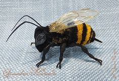 ПЧЁЛКА Quilling Animals, Insects, Bee, Bees
