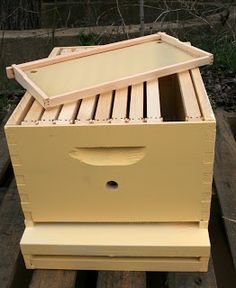 Build Your Own: Bee Hive Stand - Show Me The Honey ...