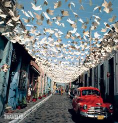 bird decoration in the streets of Cuba- this would be fab ! wow....but with butterflies!!!