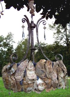 Hanging Oyster Shell Chandelier