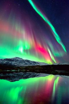 Northern lights- I have to see this is person one day