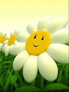 Learn how to make a gif. Create animated gifs online with our free gif animator in just three easy steps. Flowers Gif, Happy Flowers, Animiertes Gif, Daisy Girl, Animation, Gif Pictures, Animated Cartoons, Good Morning Quotes, Mellow Yellow