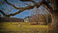 Abandoned in VA Selma Plantation, Loudoun County near Leesburg