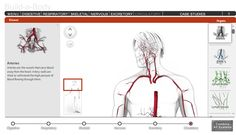 Educational Technology Guy: Build-A-Body - very cool interactive biology site - build a human body