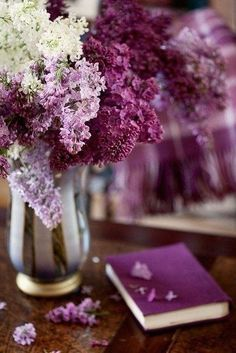 lilac violet my passion