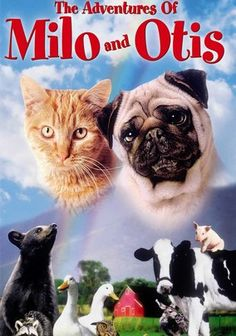 My all time favorite movie from my childhood. :)