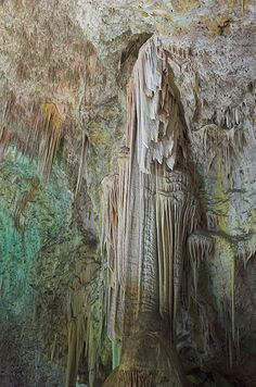 Carlsbad Caverns National Park...if you've never been, you need to go.