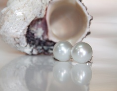 Ladies White South Sea Pearl Earrings, 14mm South Sea pearls in 14ky gold. John Ford Jewelers #galveston