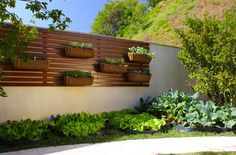 hydroponicgarden inside design - Google Search