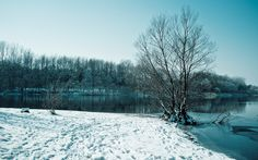 winter backgrounds for laptop - winter category