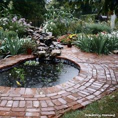 making an inexpensive garden pond, outdoor living, perennial, ponds water features, Finished garden pond The pond is kinda kidney shaped and it surrounded by old brick we got from a school that was being torn down Back Gardens, Outdoor Gardens, Water Gardens, Indoor Garden, Ponds Backyard, Garden Ponds, Goldfish Pond, Diy Pond, Garden Storage Shed
