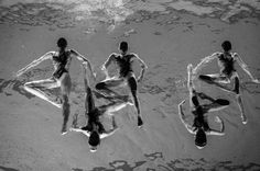 Winners of The World Press Photo 2016  , - ,   These are the wi...