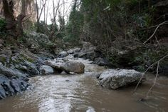 Milli Gorge close to Rethymno