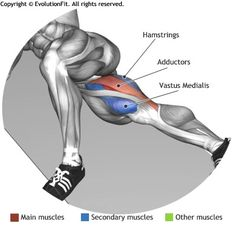 ADDUCTORS -  INNER THIGH LIFTS                                                                                                                                                      More