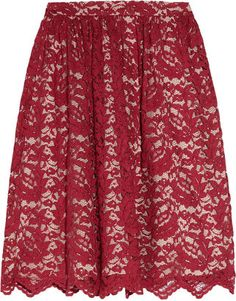Erdem Madeleine lace and silk skirt