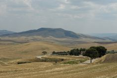 On the road: Irsina, Basilicata
