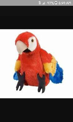 Cute little stuff animal parrot.
