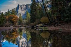 10 Best National Parks to Visit in the Fall Top 10 National Parks, Yosemite National Park, Brown Siberian Husky, Pink Flowering Trees, Mountain Wallpaper, Tree Artwork, Yosemite Valley, Water Reflections, Hd Wallpaper