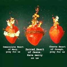 The Sacred Heart of Jesus, the Immaculate Heart of Mary and the Chaste Heart of . Catholic Prayers, Catholic Art, Catholic Saints, Roman Catholic, Croix Christ, Inspirational Catholic Quotes, Miracle Prayer, Heart Of Jesus, Religious Images