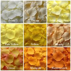 Yellow Rose Petals Mix and Match Colors #ivory #cream #yellow #peach #citrus #marigold #butterscotch #silkrosepetals #rosepetals #rose #petals #yellowwedding #wedding Silk Rose Petals Yellow Artificial by LittleThingsFavors