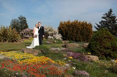 Bride and Groom wedding pictures at Hall Place Groom Wedding Pictures, Wedding Images, Wedding Groom, Wedding Day, White Dress, Wedding Photography, Gardens, Weddings, Bride