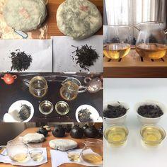 Comparing two Gu Shu sheng pu-erh teas from Yi Wu area. Luo Shui Dong and Wang Gong from Ancient tea trees around 300 year old. Wholesale Tea, Tea Blog, Pu Erh Tea, Tea Tree, Teas, Harvest, Tees, Cup Of Tea, Tea