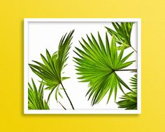 Palm Tree Leaf Palm Poster Palm Print Green Tree Leaf by Blckd