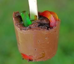 Worms and Dirt Pudding Pops