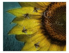 Sunflower and bees 10x 8 fine art print by CaldwellFarmStudio, $26.00