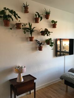 Floating green plants on the plant wall. Create your own plant wall, its easy and beautiful. Plant Wall, Green Plants, Create Your Own, Planter Pots, Interior, Let, Beautiful, Instagram, Easy