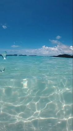 Mitch_TikTokz 😍( has created a short video on TikTok with music See You Again (feat. Can you see the shark? Ocean Wallpaper, Summer Wallpaper, Iphone Background Wallpaper, Beauty Iphone Wallpaper, Iphone Wallpaper Glitter, Sky Aesthetic, Aesthetic Videos, Aesthetic Pictures, Orange Aesthetic