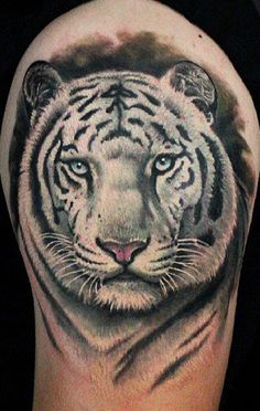 Coloring pages tiger coloring pages coloring pages for White tiger tattoo