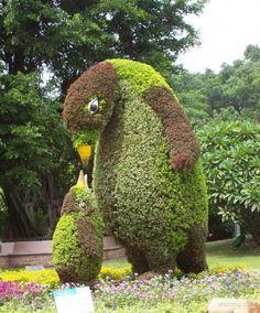 Garden art _-_ oder_die_Ku - How to Garden-Design Topiary Plants, Topiary Garden, Garden Art, Amazing Gardens, Beautiful Gardens, Beautiful Flowers, Artificial Topiary, Artificial Plants, Decoration Plante